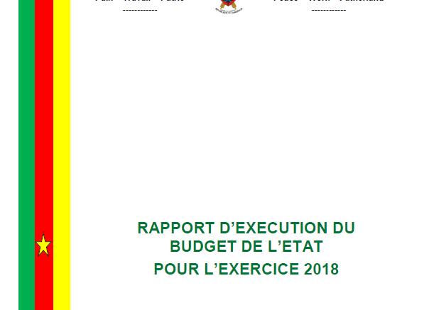 Calendrier Budgetaire.Rapport D Execution Du Budget De L Etat 2018 Est Disponible